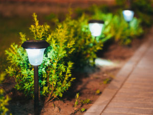SOLAR LIGHTING AT EARLSWOOD GARDEN CENTRE GUERNSEY
