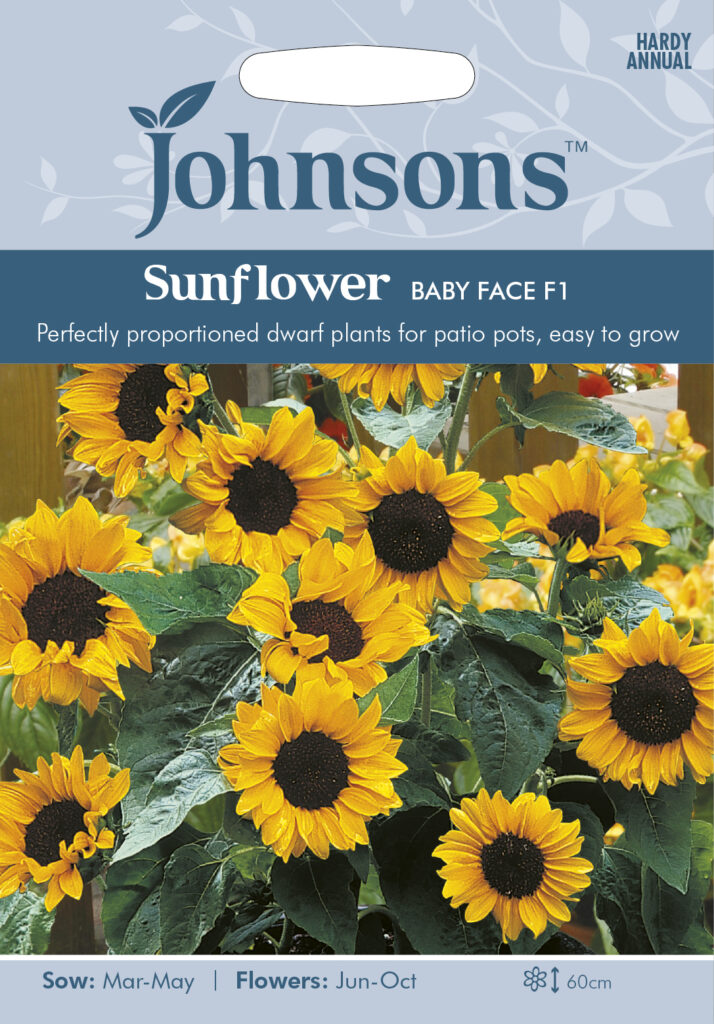 flower seeds at earlswood garden centre guernsey
